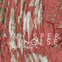 A Whisper In The Noise - To Forget